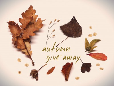 autumn-give-away